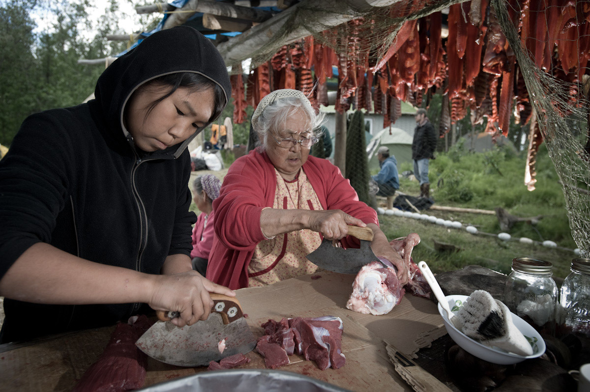 Generations work on subsistence foods at fish camp near Marshall, Alaska.